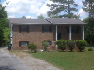 5023 Swan Rd, Chattanooga, TN 37416 (MLS #1264271) :: The Robinson Team