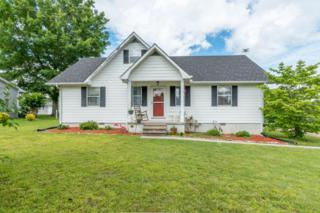 166 NW Whitecrest Cir, Cleveland, TN 37311 (MLS #1264426) :: Keller Williams Realty | Barry and Diane Evans - The Evans Group