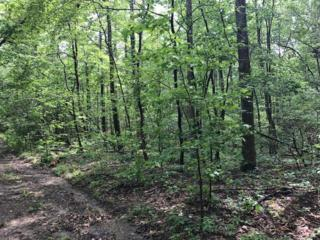 0 Millsaps Coal Rd, Soddy Daisy, TN 37379 (MLS #1264498) :: Keller Williams Realty | Barry and Diane Evans - The Evans Group