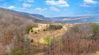 854 Dry Branch Ct, Chattanooga, TN 37419 (MLS #1261070) :: Keller Williams Realty   Barry and Diane Evans - The Evans Group