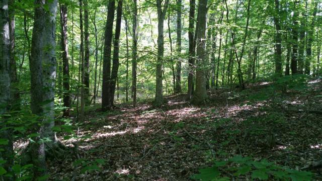 110 Hidden Hollow Cir, Dunlap, TN 37327 (MLS #1227434) :: The Robinson Team