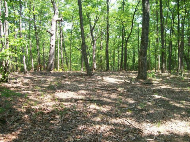 Lot 125 Harlee Vista Dr, Pikeville, TN 37367 (MLS #1228927) :: The Robinson Team