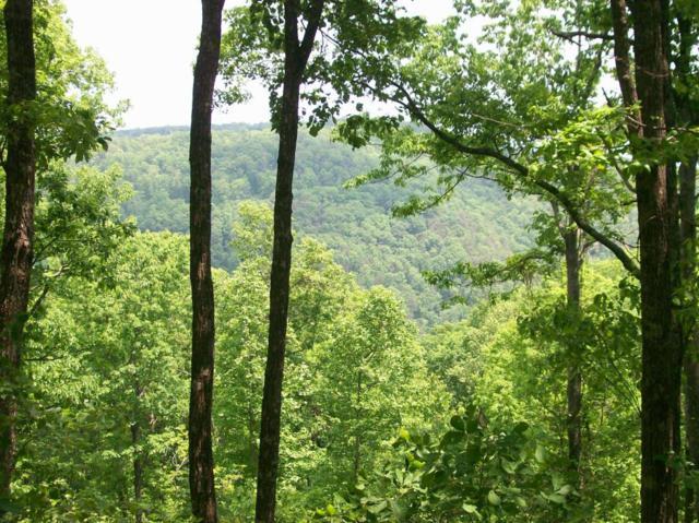 Lot 207 Harlee Vista Dr, Pikeville, TN 37367 (MLS #1228939) :: Chattanooga Property Shop