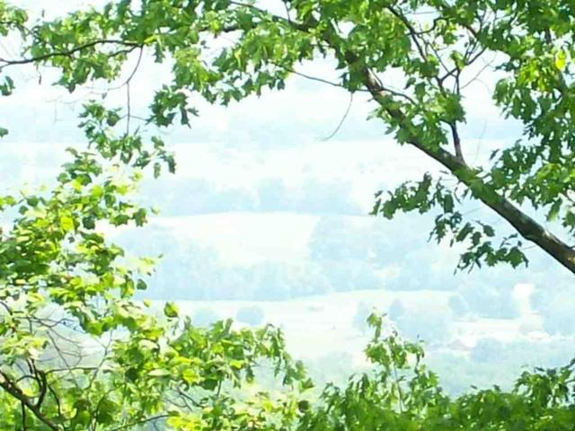 Lot 208 Harlee Vista Dr, Pikeville, TN 37367 (MLS #1228951) :: Chattanooga Property Shop