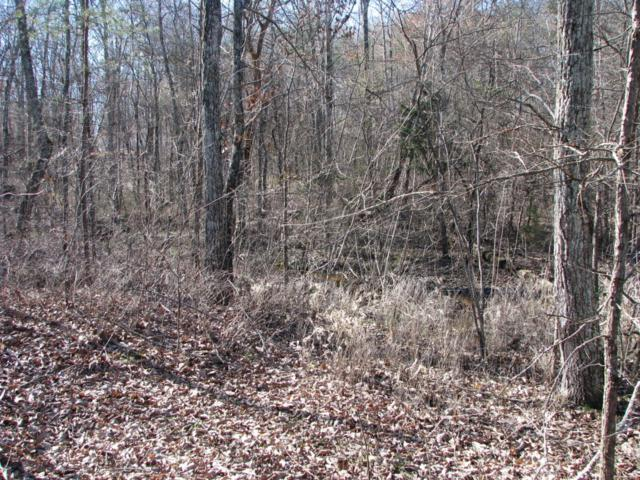 Lot 4 Woodall Point Rd #4, South Pittsburg, TN 37380 (MLS #1242632) :: Chattanooga Property Shop