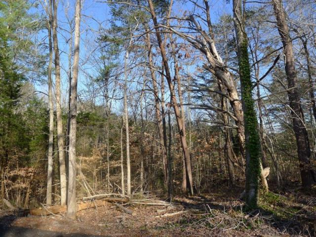 Lot 2 Tuscon Tr #2, Dandridge, TN 37725 (MLS #1243277) :: Chattanooga Property Shop
