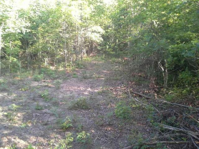 Lot 40-41 Greenfields Rd, Spencer, TN 38585 (MLS #1243760) :: Chattanooga Property Shop