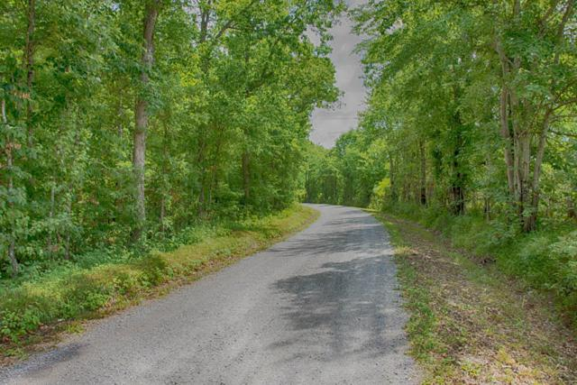 0 Gordon Forester, Cloudland, GA 30731 (MLS #1249471) :: Chattanooga Property Shop