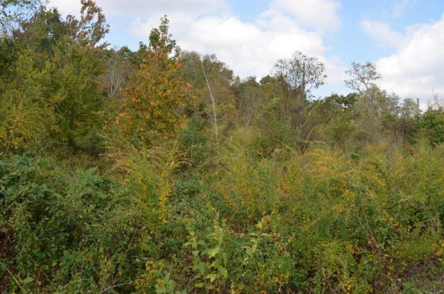 0 Pinnacle Point Rd #5, South Pittsburg, TN 37380 (MLS #1254646) :: Chattanooga Property Shop