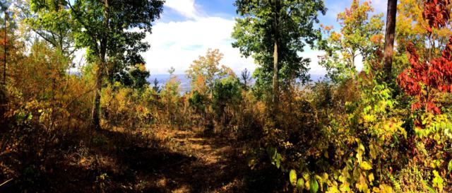 00 Pinnacle Point Rd #6, South Pittsburg, TN 37380 (MLS #1254786) :: Chattanooga Property Shop