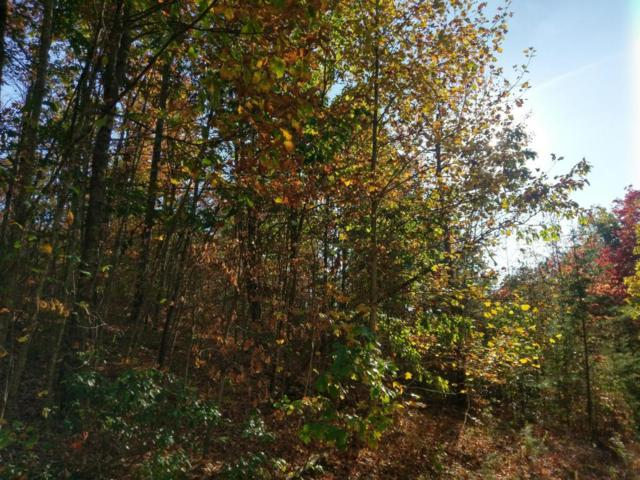 31 B Cosmos Trail, Dunlap, TN 37327 (MLS #1254806) :: The Robinson Team