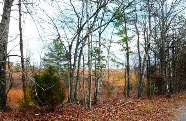 Lot 16 Henderson Rd, Dayton, TN 37321 (MLS #1258082) :: Chattanooga Property Shop