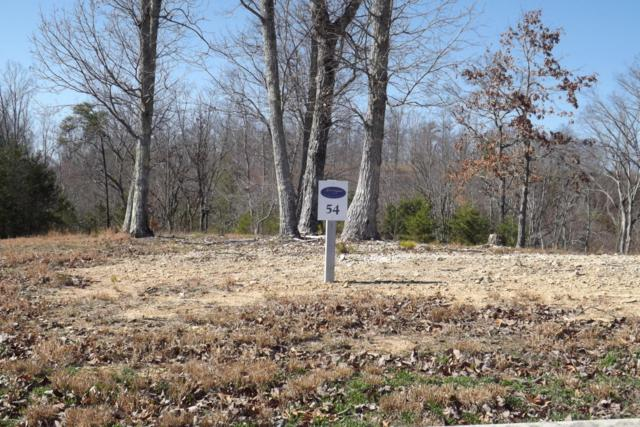 Lot 54 River Run Tr #54, Spring City, TN 37381 (MLS #1260662) :: Keller Williams Realty | Barry and Diane Evans - The Evans Group