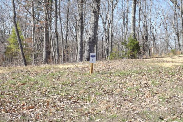 Lot 1 Rivermyst Dr #1, Spring City, TN 37381 (MLS #1260667) :: Chattanooga Property Shop