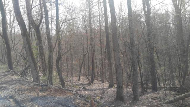 Lot #88 Cypress Dr #88, Spring City, TN 37381 (MLS #1261695) :: Chattanooga Property Shop