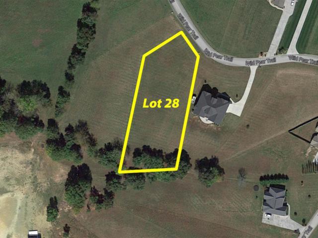 0 Wild Pear Tr #28, Dandridge, TN 37725 (MLS #1264341) :: Chattanooga Property Shop