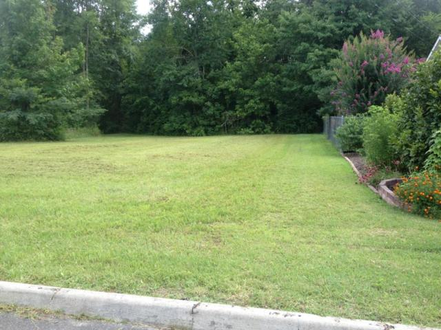 2524 Olive St, Chattanooga, TN 37406 (MLS #1265014) :: Chattanooga Property Shop