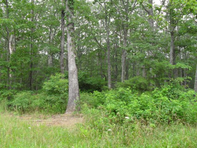 7 Gray Creek Rd Lot #7, Dunlap, TN 37327 (MLS #1266387) :: The Robinson Team