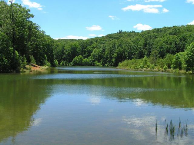 650 Sunbeam Lake Loop, Dunlap, TN 37327 (MLS #1266776) :: Chattanooga Property Shop