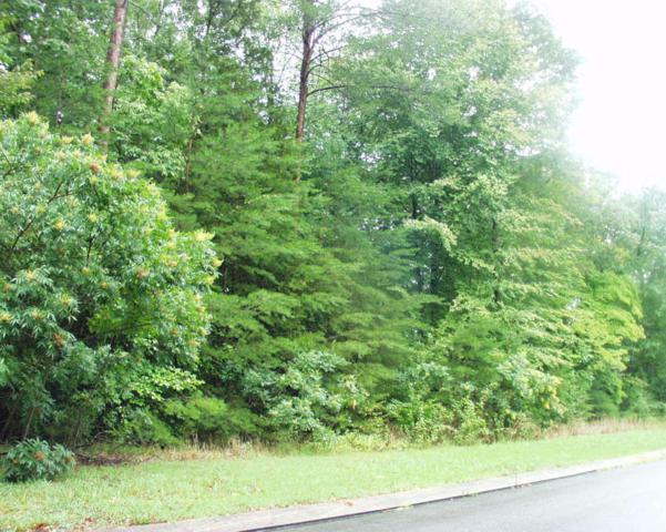 47 Big Cedar Dr #47, Dunlap, TN 37327 (MLS #1266865) :: The Robinson Team