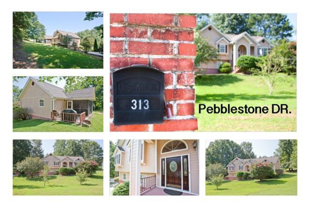 313 Pebblestone Dr, Ringgold, GA 30736 (MLS #1267366) :: The Mark Hite Team