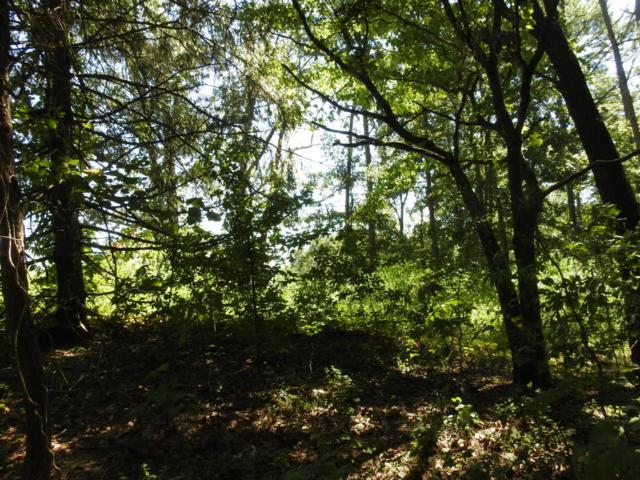 2 Cottage Crest Ct Lot 27, Chickamauga, GA 30707 (MLS #1269826) :: Chattanooga Property Shop