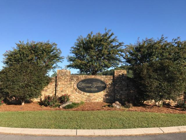 Lot 5 Alexander Dr Dr, Rocky Face, GA 30740 (MLS #1270327) :: The Robinson Team