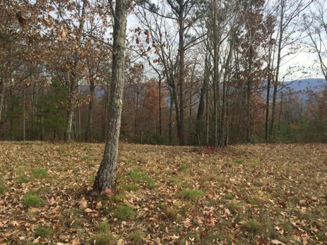 41 Bluff View Dr #41, Dunlap, TN 37327 (MLS #1270352) :: The Robinson Team