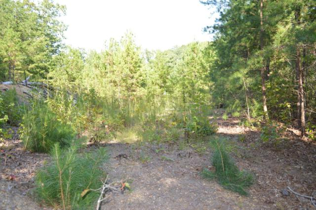 Lot 47/48 NW Mcclanahan Dr 47/48, Cleveland, TN 37312 (MLS #1271117) :: The Robinson Team
