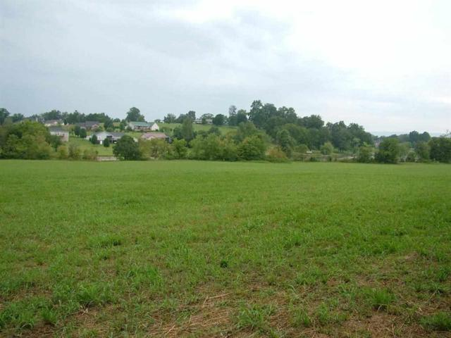 Lot 3 New Union Rd #3, Dayton, TN 37321 (MLS #1271156) :: The Mark Hite Team