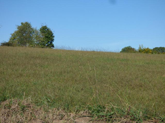 Lot 19 Sable Rd #19, Spring City, TN 37381 (MLS #1271294) :: Chattanooga Property Shop