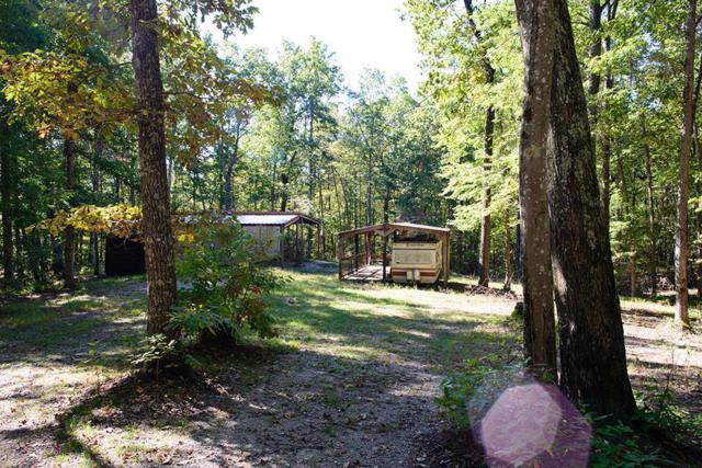 1247 Chestnut Ridge Rd, Spring City, TN 37381 (MLS #1271314) :: The Robinson Team