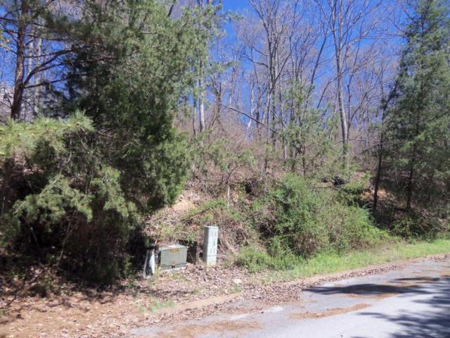 5911 Eagle Bluff Trail, Chattanooga, TN 37416 (MLS #1271727) :: The Robinson Team