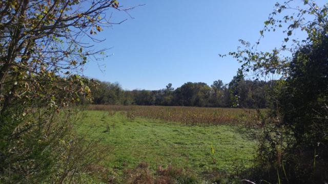 0 Old State Hwy 28 #60.8, Pikeville, TN 37367 (MLS #1271751) :: Chattanooga Property Shop