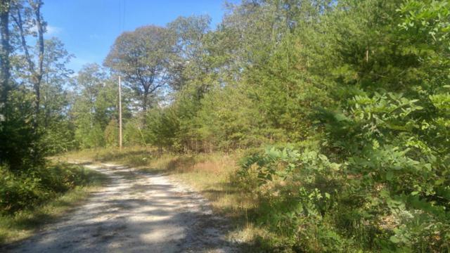 1 Mirror Lake Rd, Dunlap, TN 37327 (MLS #1271779) :: The Robinson Team