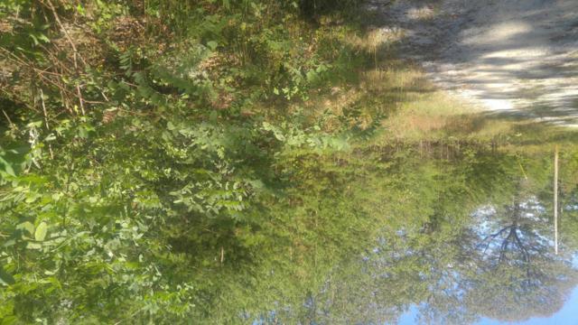 0 Mirror Lake Rd #1.05, Dunlap, TN 37327 (MLS #1271784) :: Chattanooga Property Shop