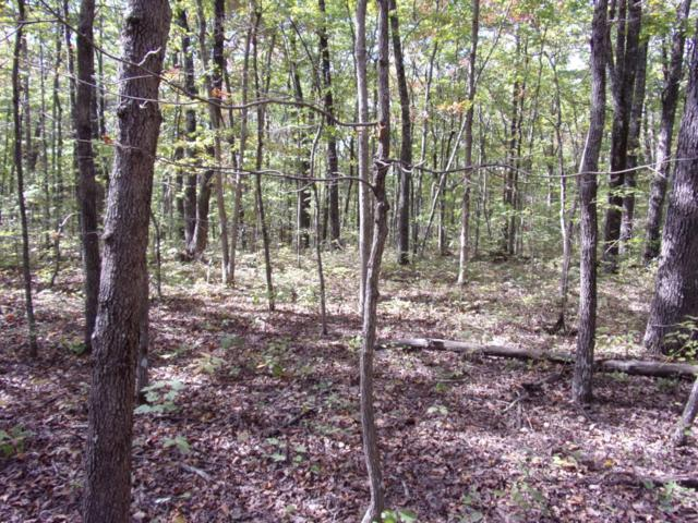 0 Ridge Rd W #304, Pikeville, TN 37367 (MLS #1272089) :: Chattanooga Property Shop