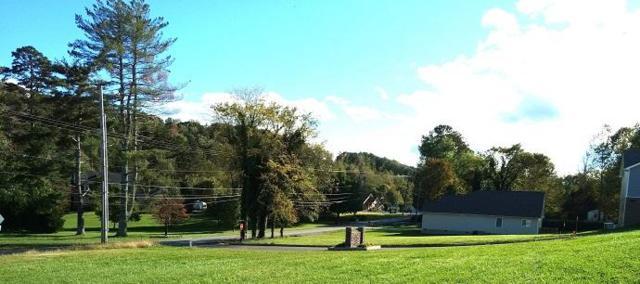 166 Old Graysville Rd, Dayton, TN 37321 (MLS #1272176) :: The Robinson Team