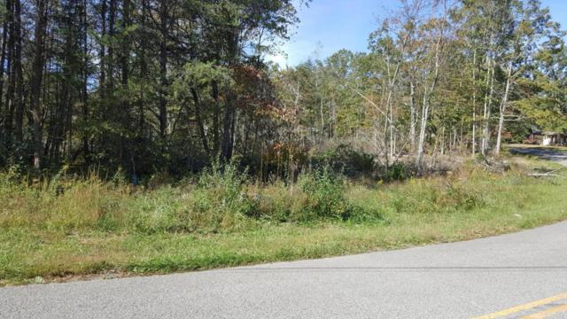 1159 Black Mountain Rd, Dunlap, TN 37327 (MLS #1272231) :: Chattanooga Property Shop