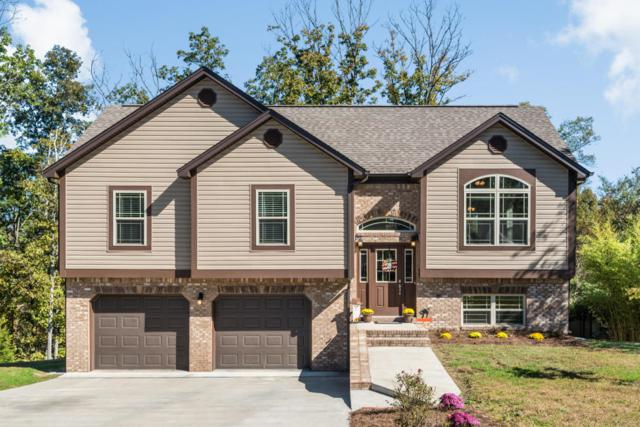96 Round Tree Ct, Flintstone, GA 30725 (MLS #1272378) :: The Robinson Team