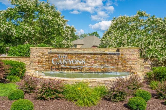 493 Canyon Springs Dr, Hixson, TN 37343 (MLS #1273080) :: The Robinson Team