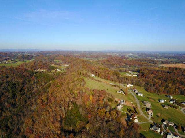 0 Scenic View Dr #58, Talbott, TN 37877 (MLS #1273525) :: Chattanooga Property Shop