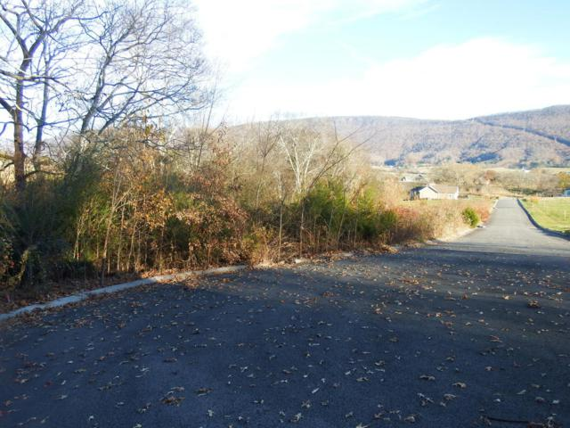 15 Scenic Hollow Dr, Dunlap, TN 37327 (MLS #1273624) :: Chattanooga Property Shop
