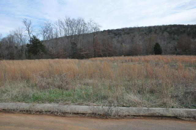 145 Edgewater Way, Jasper, TN 37347 (MLS #1273965) :: Chattanooga Property Shop