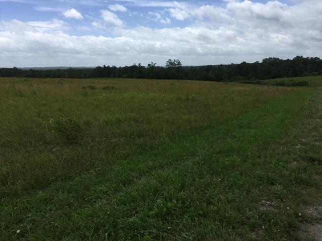 Lot 5 Long Branch Rd, Spencer, TN 38585 (MLS #1274824) :: Chattanooga Property Shop