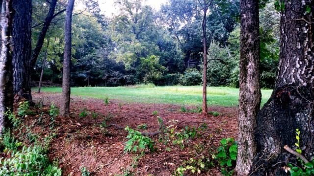 0 Madison Ave Lot 4, Athens, TN 37303 (MLS #1275142) :: Chattanooga Property Shop