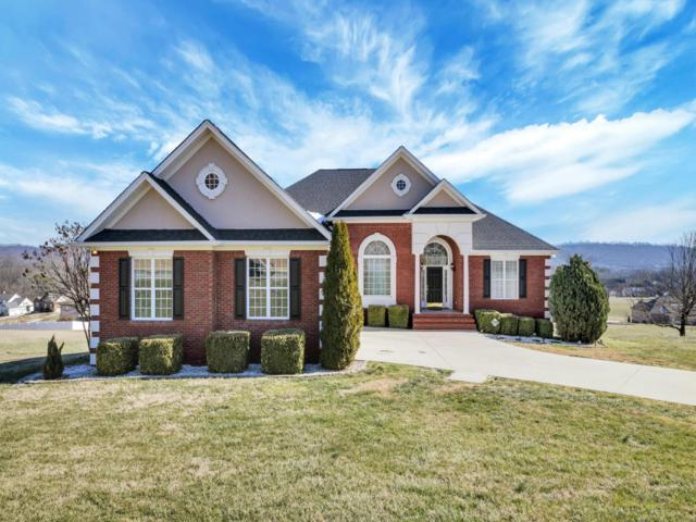 206 Thorncrest Dr, Ringgold, GA 30736 (MLS #1275487) :: The Robinson Team