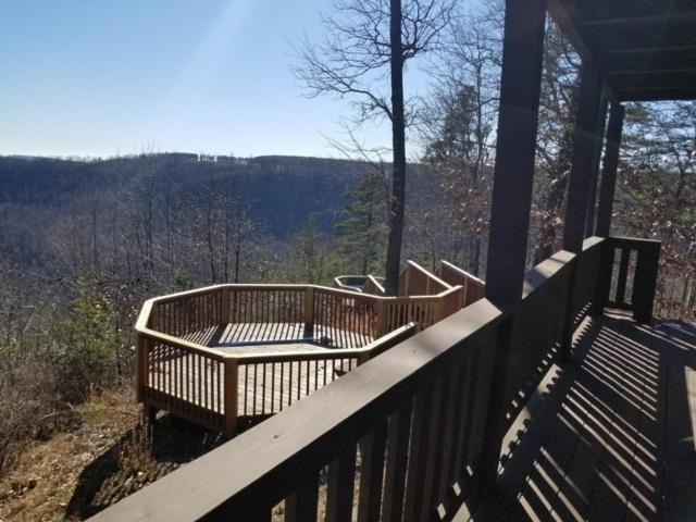 790 Payne Cove Drive, South Pittsburg, TN 37380 (MLS #1275616) :: Denise Murphy with Keller Williams Realty