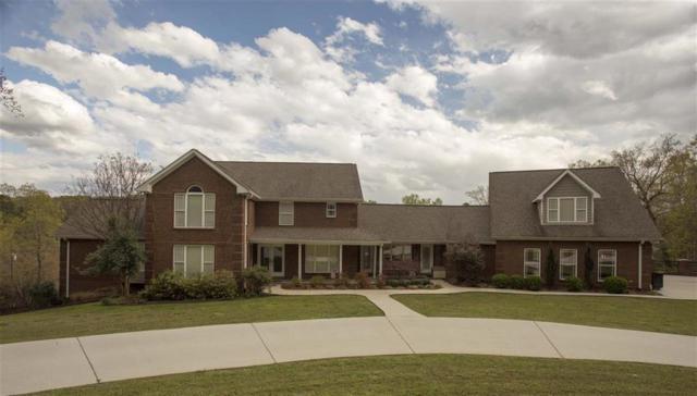 393 Horseshoe Cir, Dayton, TN 37321 (MLS #1275847) :: Chattanooga Property Shop