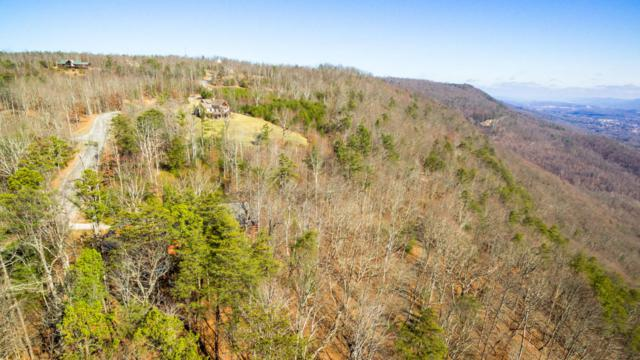 52 Bluff View Dr #52, Dunlap, TN 37327 (MLS #1275853) :: The Mark Hite Team